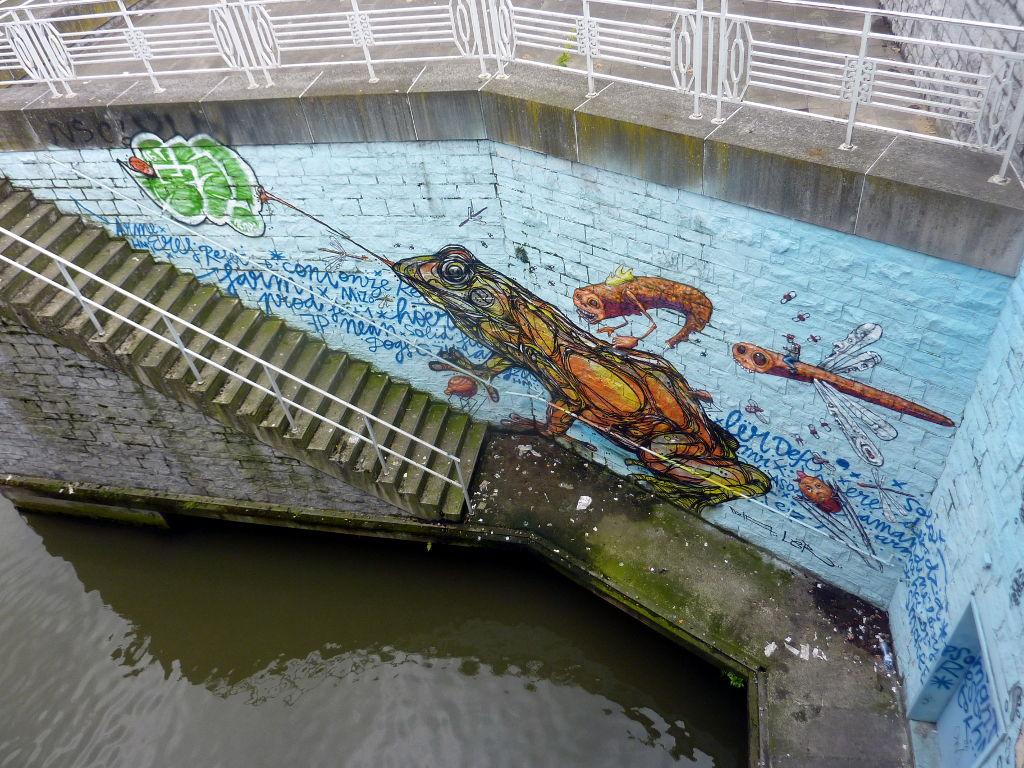 4-_la_grenouille_du_canal.jpg